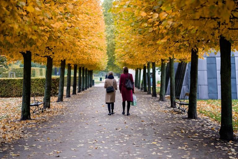 autumn copenhagen kongens have