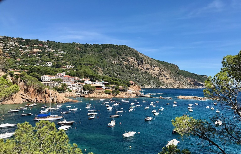 Costa Brava cove, Catalonia