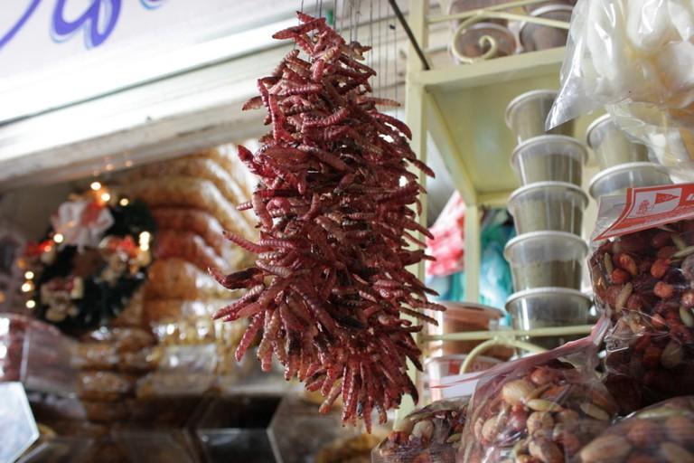 Gusano worms on sale in La Merced Market