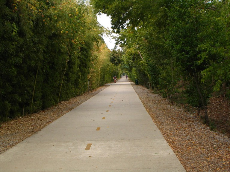Katy Trail is bordered by lush vegetation and has a wide biking and walking lane