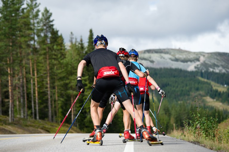 Dry-land skiing (Rulleskitrening)