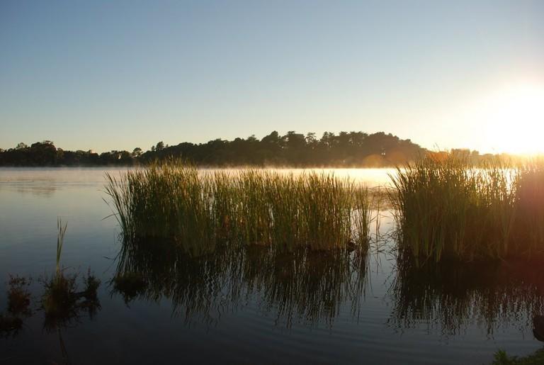 A Hamilton Lake