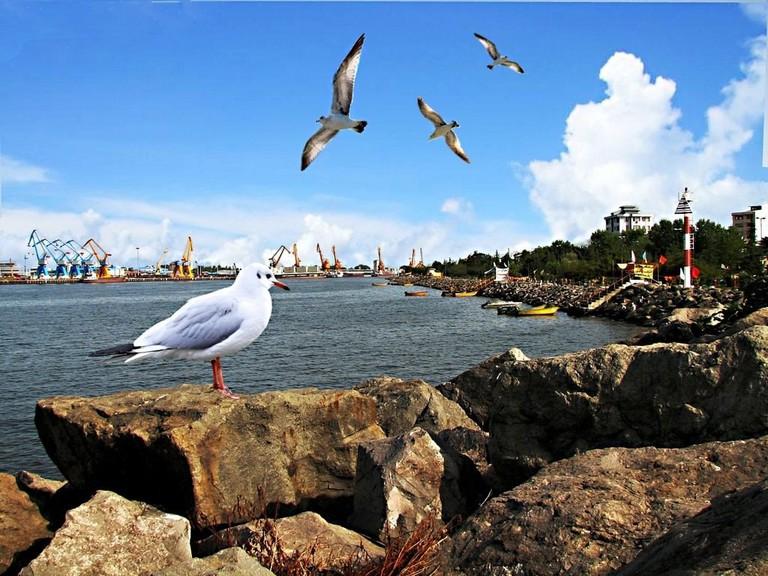 The coast of Bandar-e Anzali in the summer