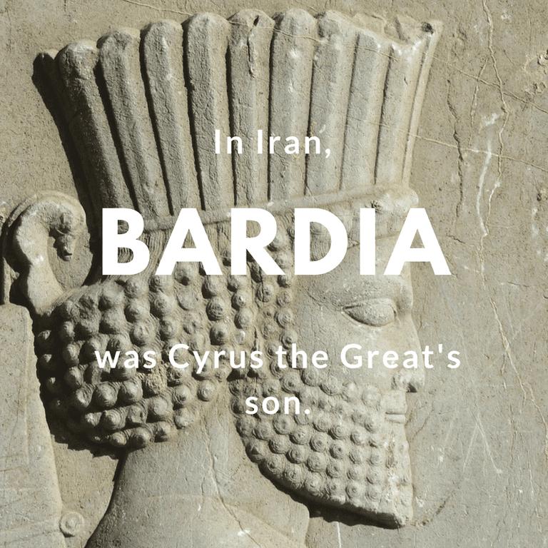 Bardia