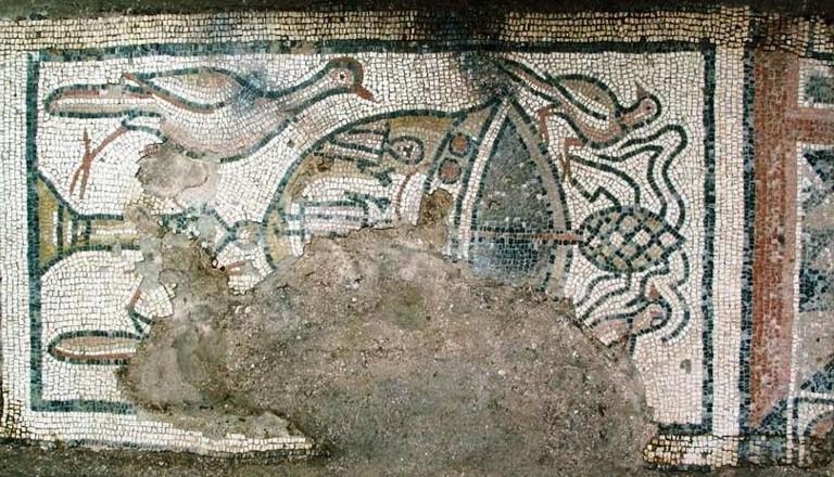 Bichvinta floor mosaic