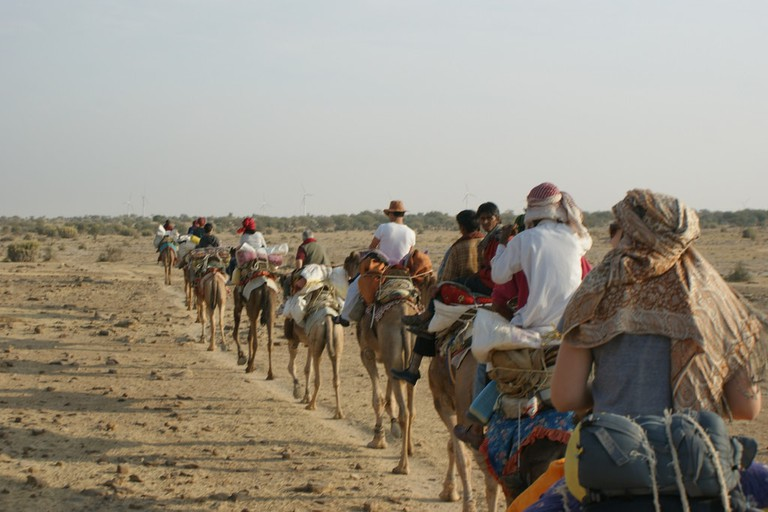 Camel Safari 1
