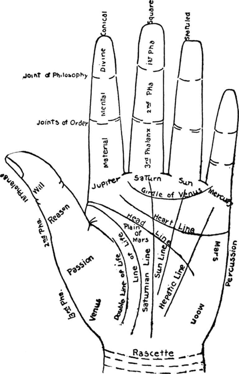A chart of the hand, and the meanings of its features