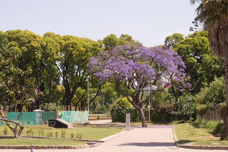 Leafy Parque Centenario, Villa Crespo