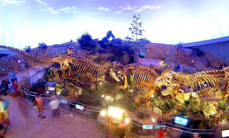 Dinosphere exhibit