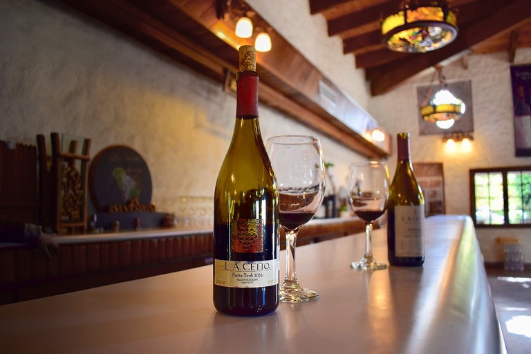 Wine tasting at L.A. Cetto winery, Baja California