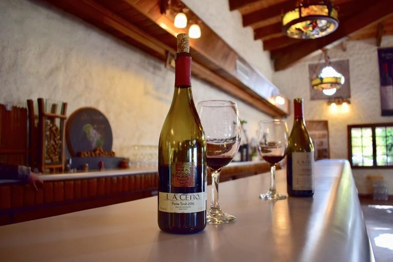 Winetasting at L.A Cetto