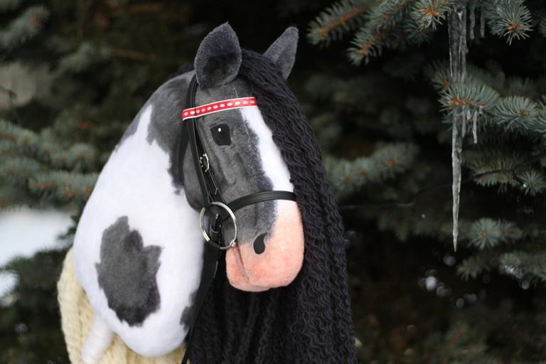 Handmade hobbyhorse