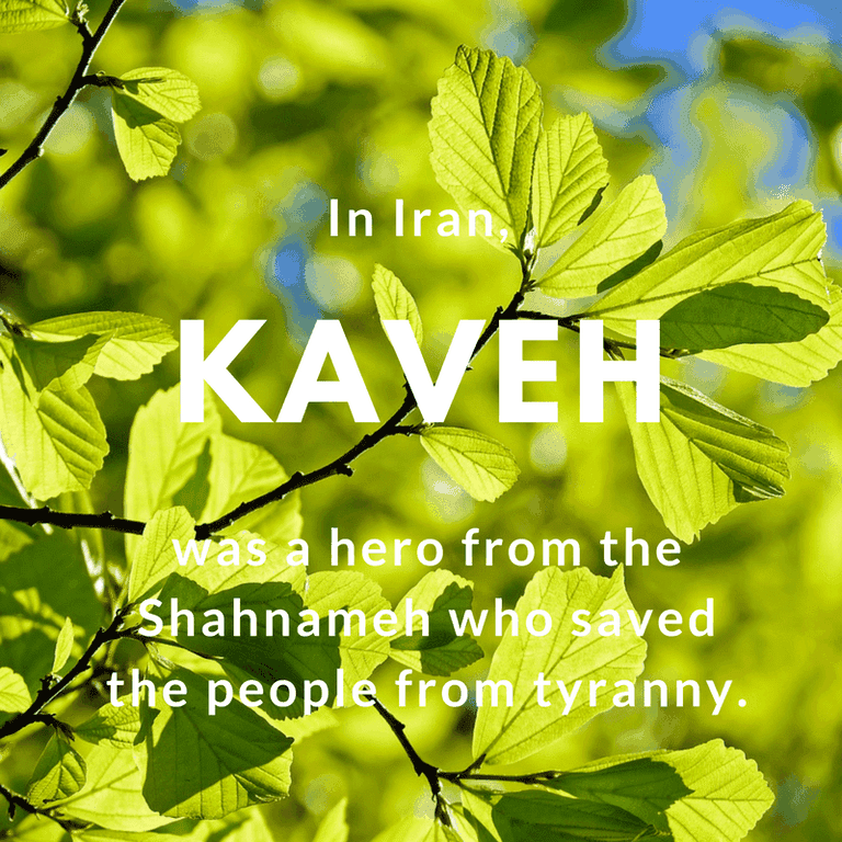 KAVEH