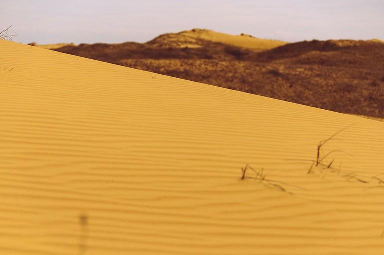 Kherson_Desert