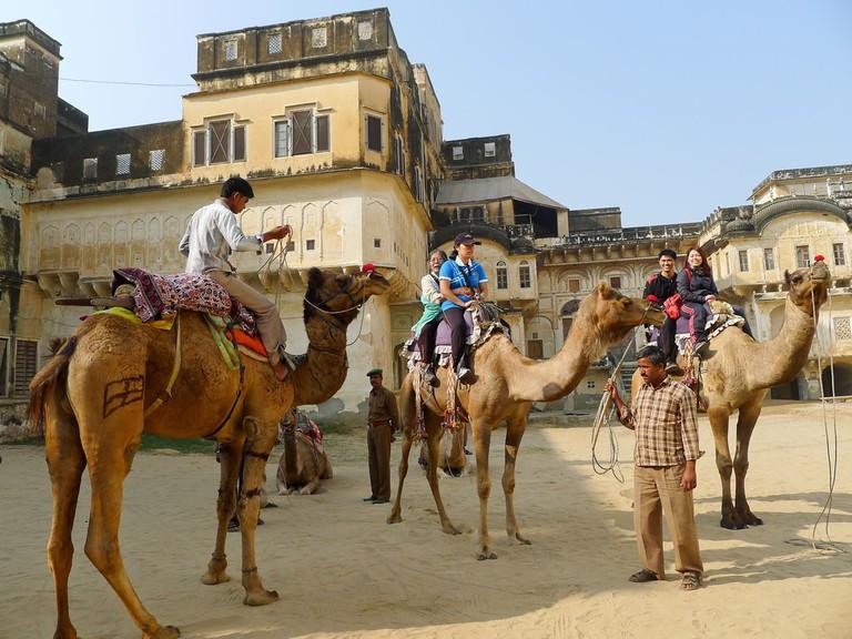 Mandawa Camel Safari