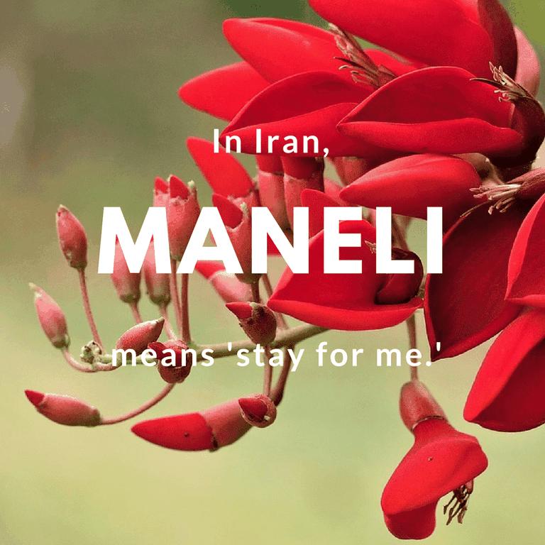 MANELI