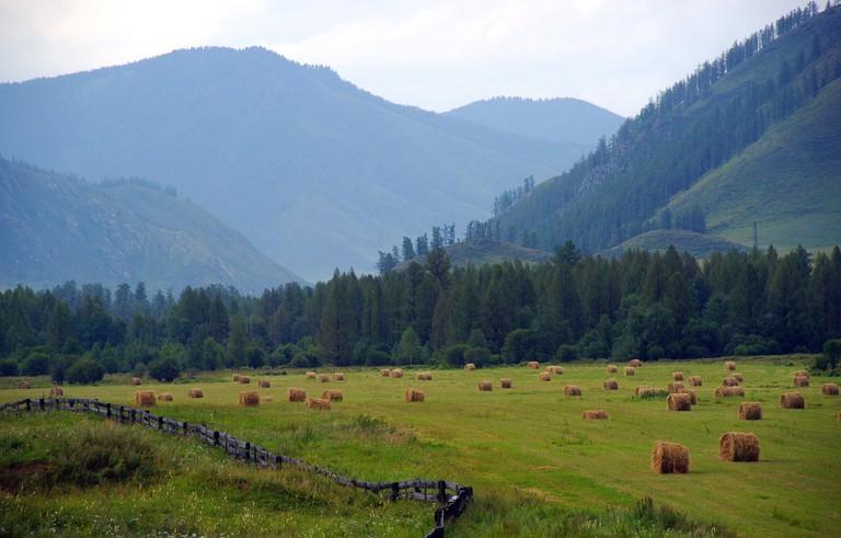 Altai. stafichukanatoly (c) / Pixabay