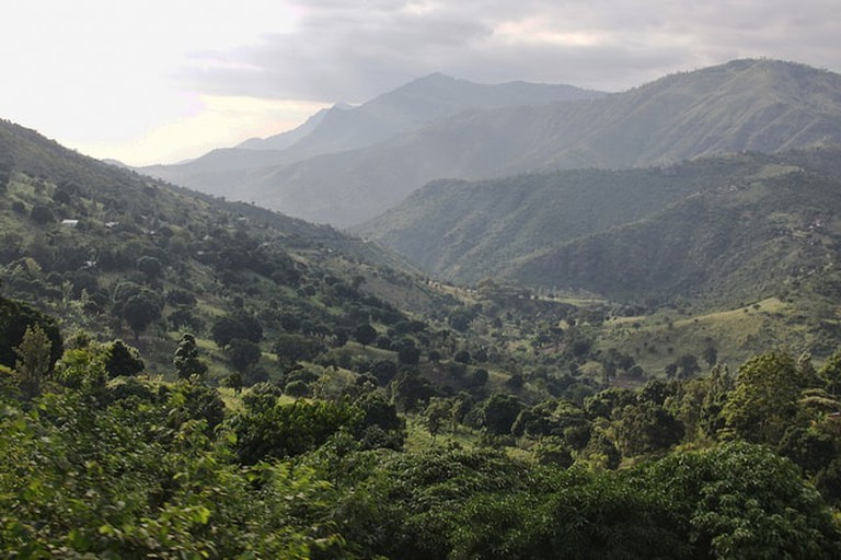Rolling hills of the Usambara Mountains | © D A Scott / Flickr