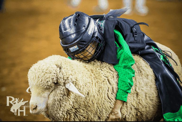 2018 Mutton Bustin' | Houston Rodeo