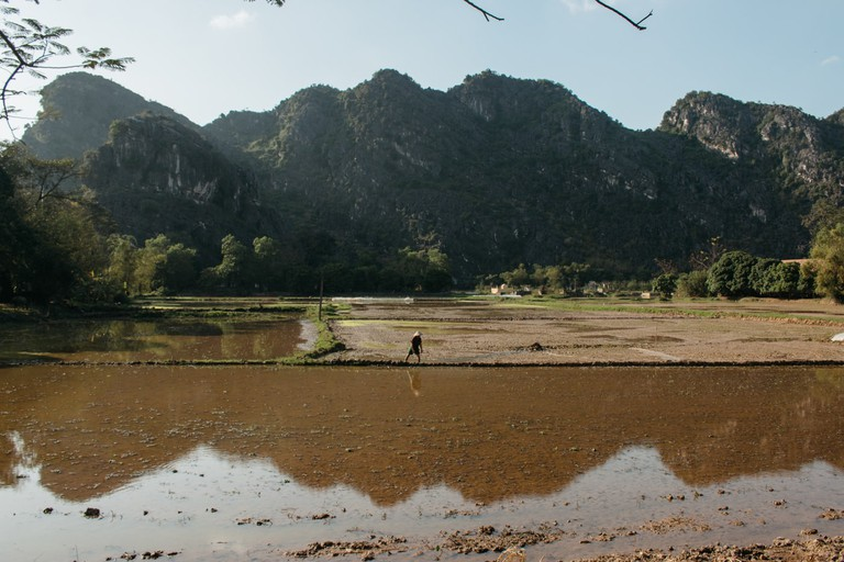 The picturesque limestone mountains form a jagged horizon with muddy rice paddies laying at the base. Vu Pham Van /