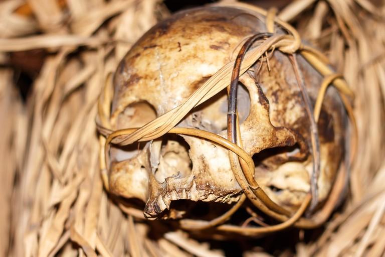 skulls borneo