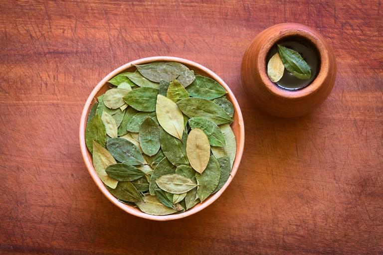Overhead shot of dried coca leaves | ©Ildi Papp/Shutterstock