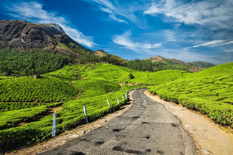 Scenic road in green tea plantations, Munnar, Kerala state, India | © DR Travel Photo and Video/Shutterstock