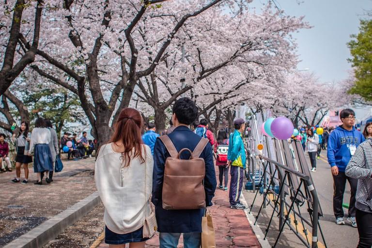 Yeongdeungpo Yeouido Park, Seoul, South Korea | ©KANNOI/Shutterstock