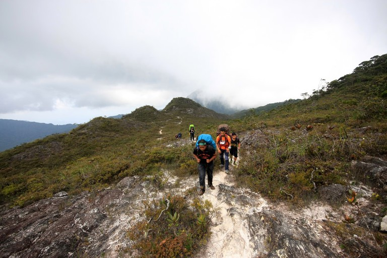 Hikers going up Gunung Tahan in Pahang, Malaysia