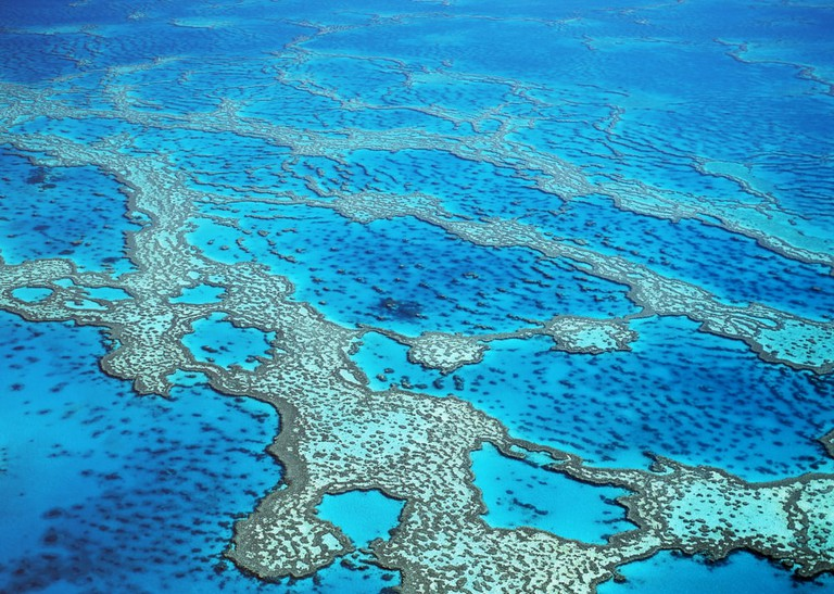 Hardy Reef on the Great Barrier Reef, Queensland, Australia | © John Carnemolla/Shutterstock