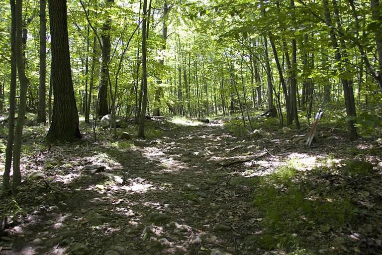 Van Slyke - Trail