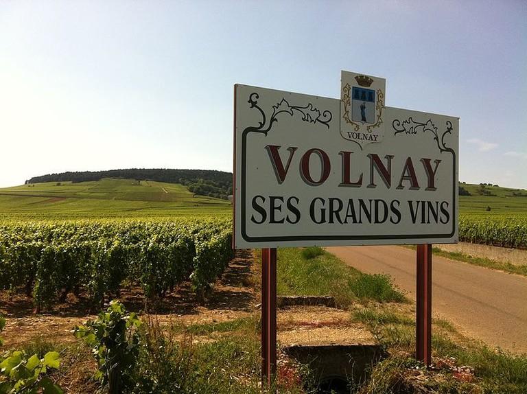 Volnay vineyards burgundy france