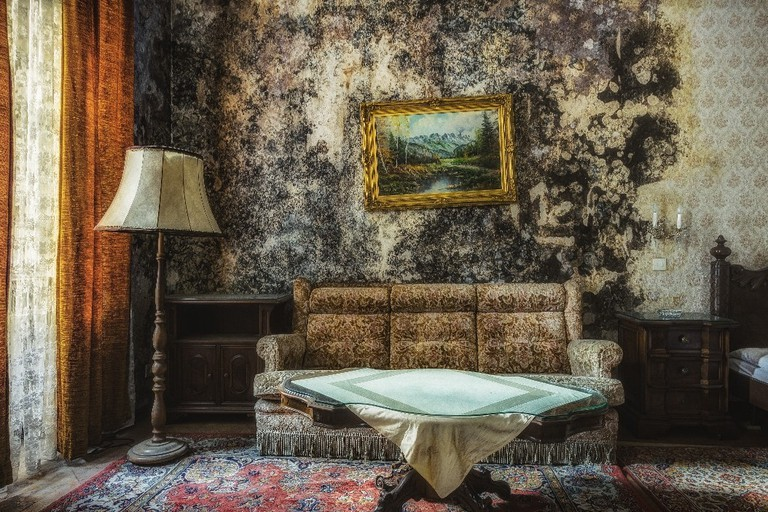 Mold taking over the once glamorous suite in an abandoned hotel