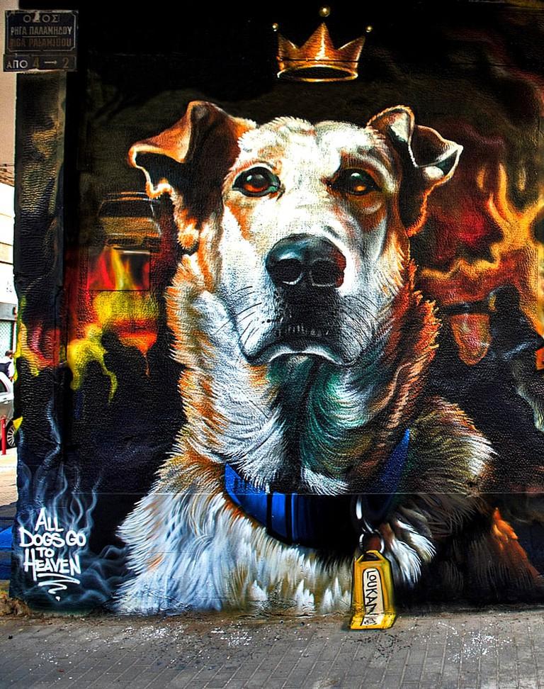 Loukanikos the 'Riot Dog'