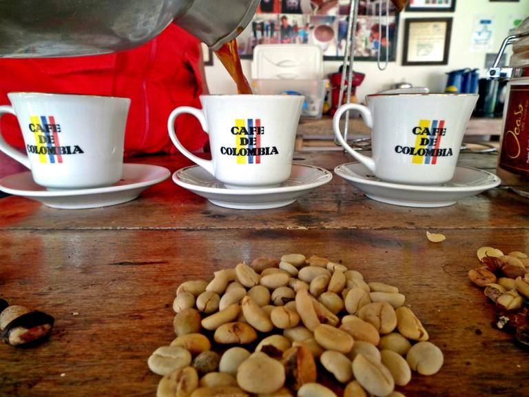 Taking the coffee tour at El Ocaso