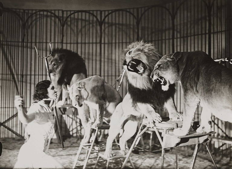 A_lion_tamer_at_Bertram_Mills_Touring_Circus,_Ascot