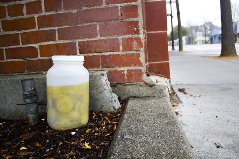 jar pickles