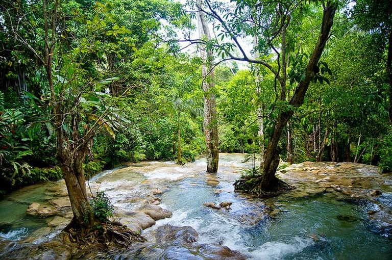 Jamaica is more than just a beach destination with nature attractions like Dunn's River Falls