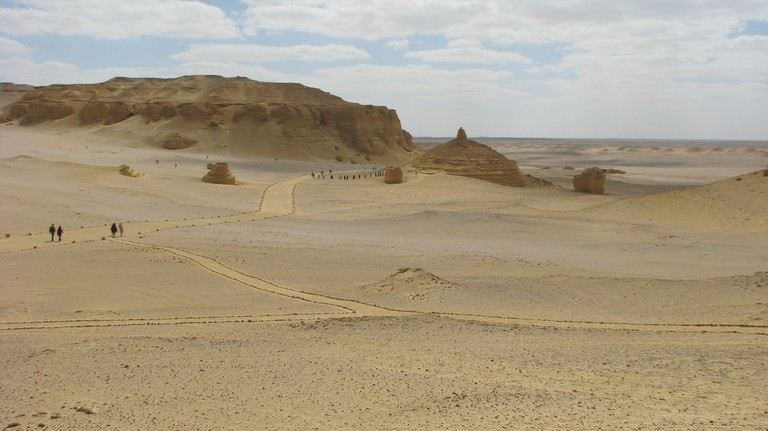The Valley of Whales, Fayoum