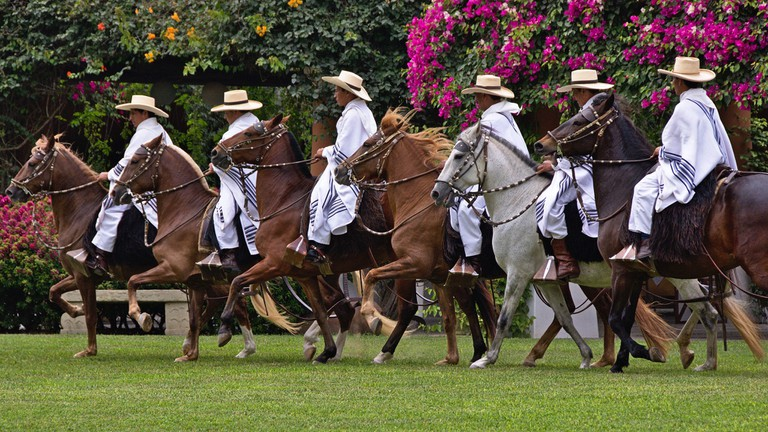 The days are filled with events to find the country's finest horse