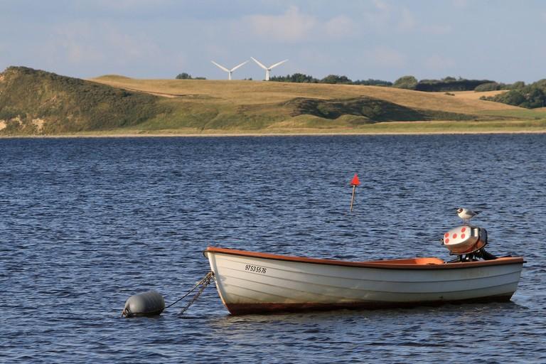 limfjord denmark