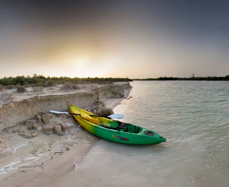 The mangrove area of Abu Dhabi is one of the most beautiful