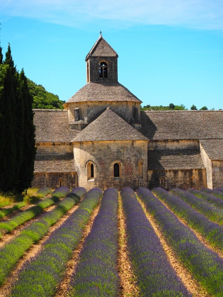 abbaye-de-senanque-monastery-abbey-notre-dame-de-senanque-161343