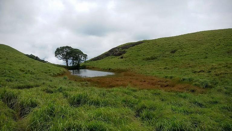 Chembra_peak,_wayanad,_kerala,_India