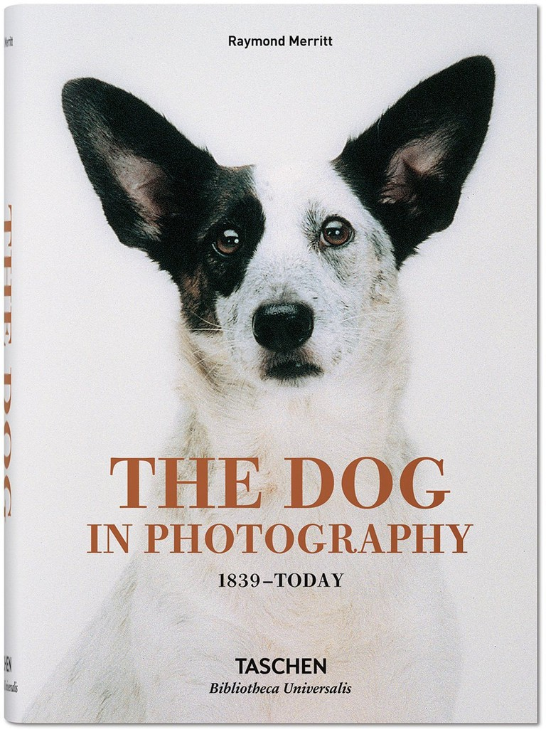 'The Dog in Photography'