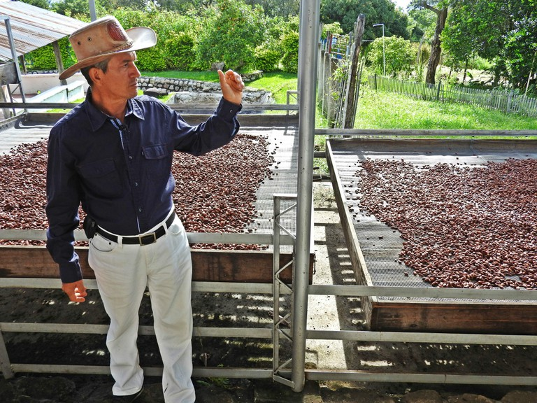 A cacao farmer in Colombia