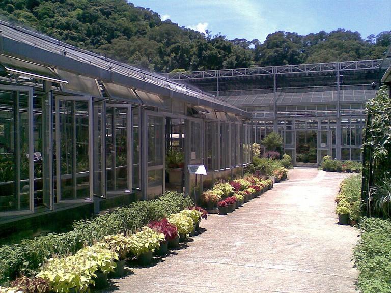 Kadoorie Farm Hong Kong