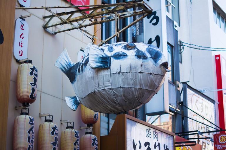 puffer-fish_osaka_reylia-slaby