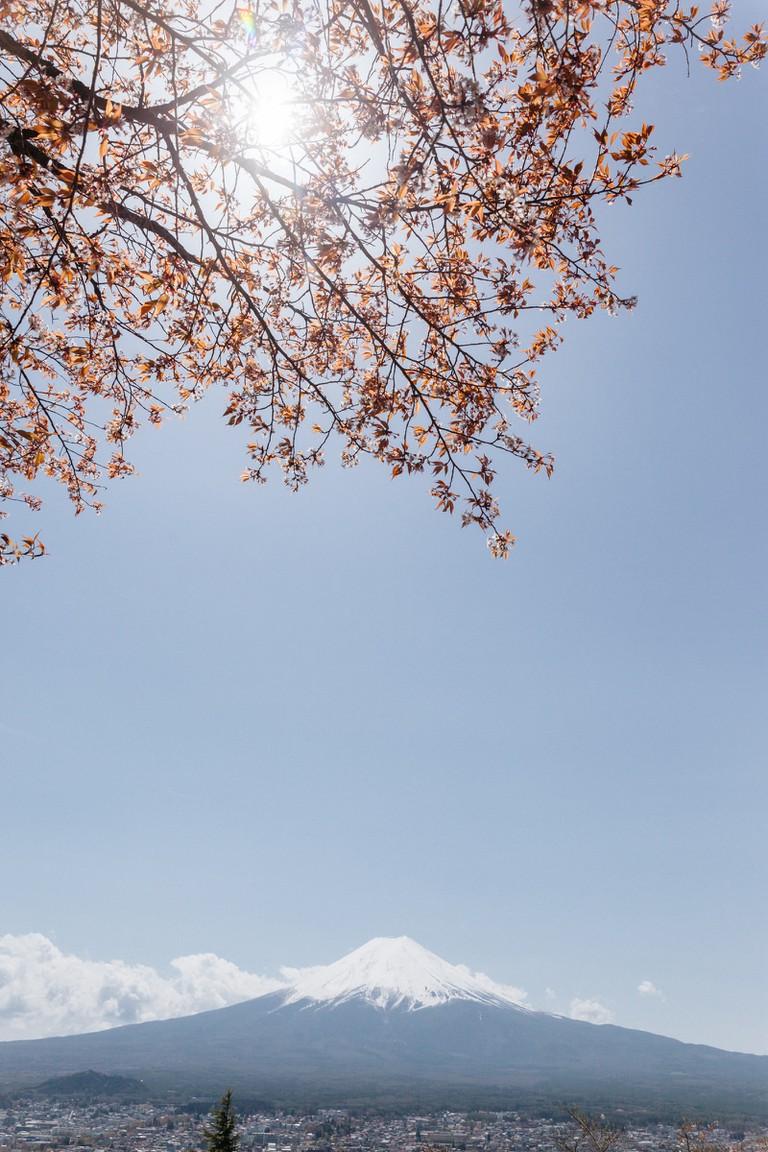 Chureito Pagoda-Mount Fuji-Japan