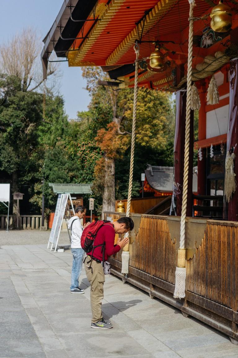 CHERRY BLOSSOM-MARUYAMA PARK-KYOTO-JAPAN